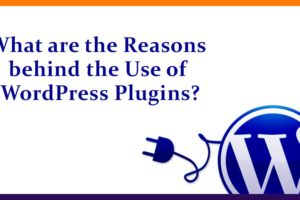 What are the Reasons behind the Use of WordPress Plugins
